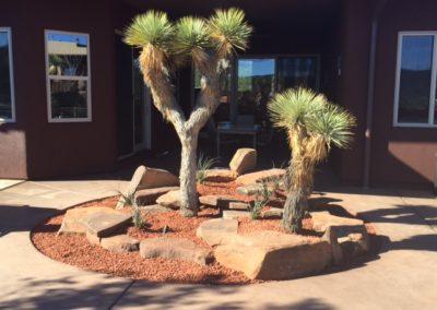 Desert-Scape-llc-gardens-12