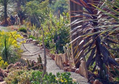 Desert-Scape-llc-gardens-14