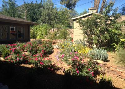 Desert-Scape-llc-gardens-3