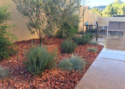 Desert-Scape-llc-gardens-4